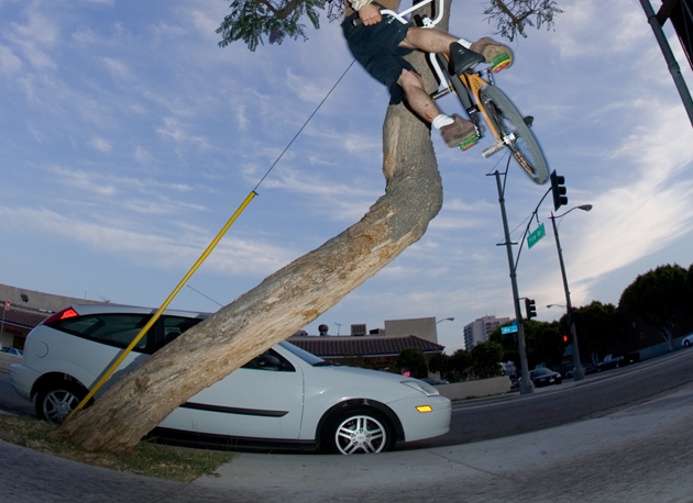 Aaron Bostrom tree boost to turndown in the streets of Long Beach, California.