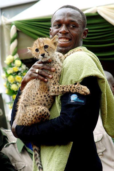 Usain Bolt adopts abandoned Kenyan cheetah cub, names it ...