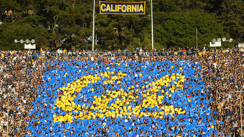 Cal card stunt
