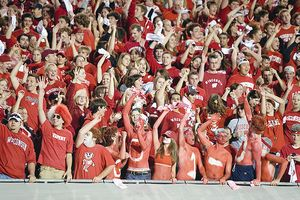 Badger fans
