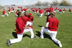 Arizona Diamondbacks Spring Training