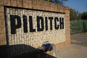 Pilditch