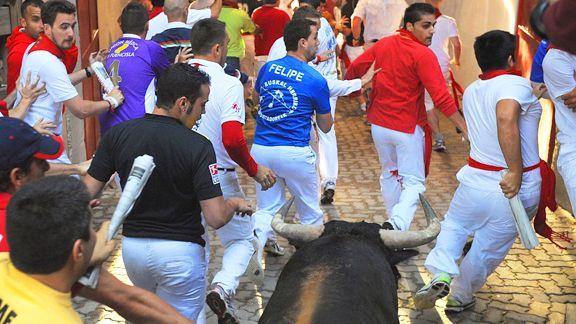 Bull Runners