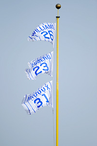 Cubs Flags