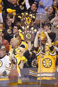 Boston Bruin Fan