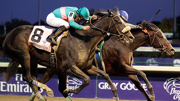 Zenyatta Blame Horse of the Year 2010
