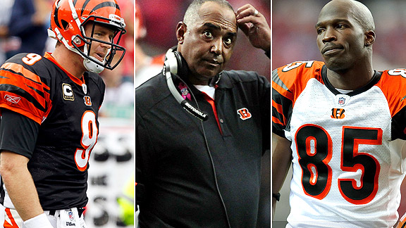 Carson Palmer/Marvin Lewis/Chad Ochocinco