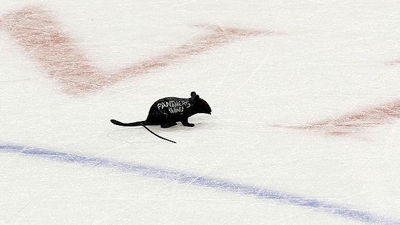 Florida Panthers rat