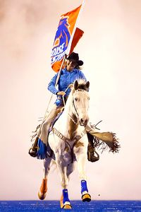 Boise Mascot