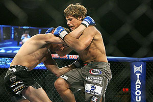 Faber/Dominick
