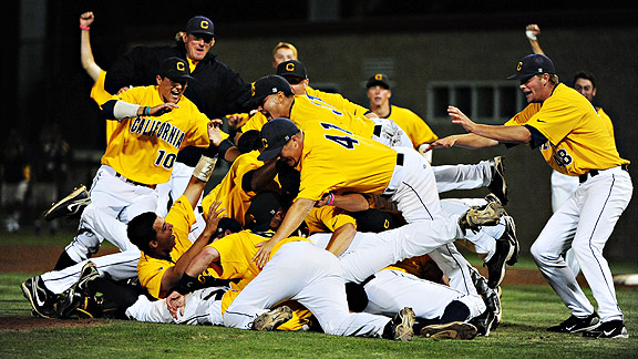Cal Baseball 