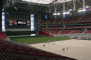 Cardinals field