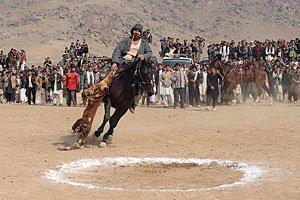 Buzkashi, the Afghanistan national sport