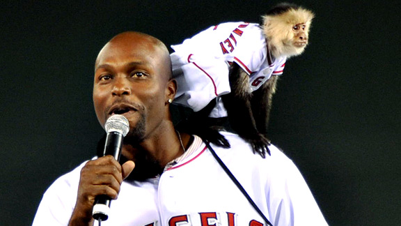 Rally Monkey