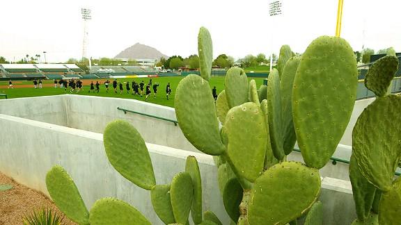 Scottsdale Stadium
