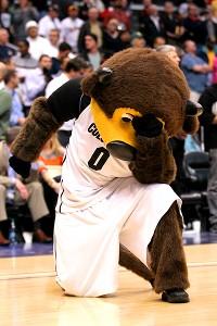 Buffaloes Mascot