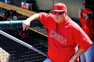 Mike Scioscia