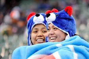 Cold Cub Fans