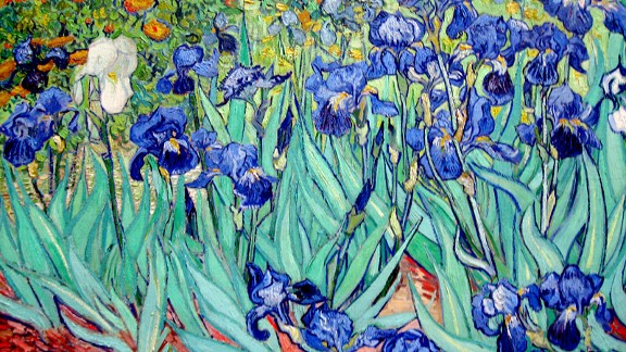 Irises (Vincent van Gogh)