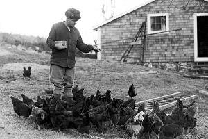 Babe Ruth Farm
