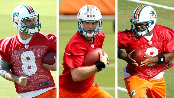 Matt Moore, Ryan Tannehill, David Garrard
