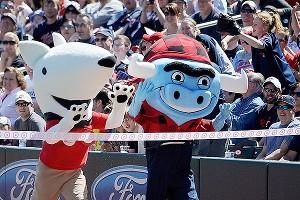 Mascots race