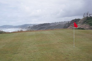 Golf flag and ocean background
