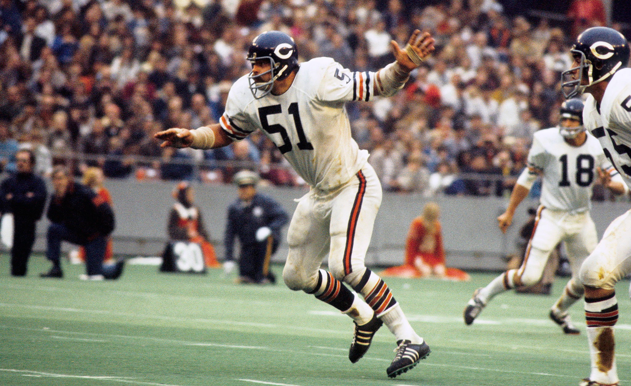 What is the greatest chicago bears trade in history - Dick wallpaper ...