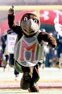 Maryland Terrapins mascot