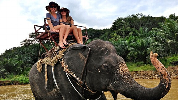 Courtney Force said the highlight of her Thailand vacation was trekking through the jungle atop this elephant.
