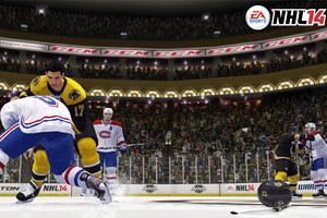 NHL 14: Enforcer