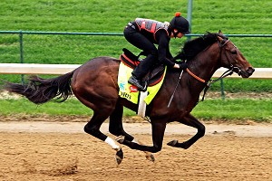 Kentucky Derby favorite Orb, seen here during a workout at Churchill Downs on Monday, enters Saturday on a four-race winning streak.