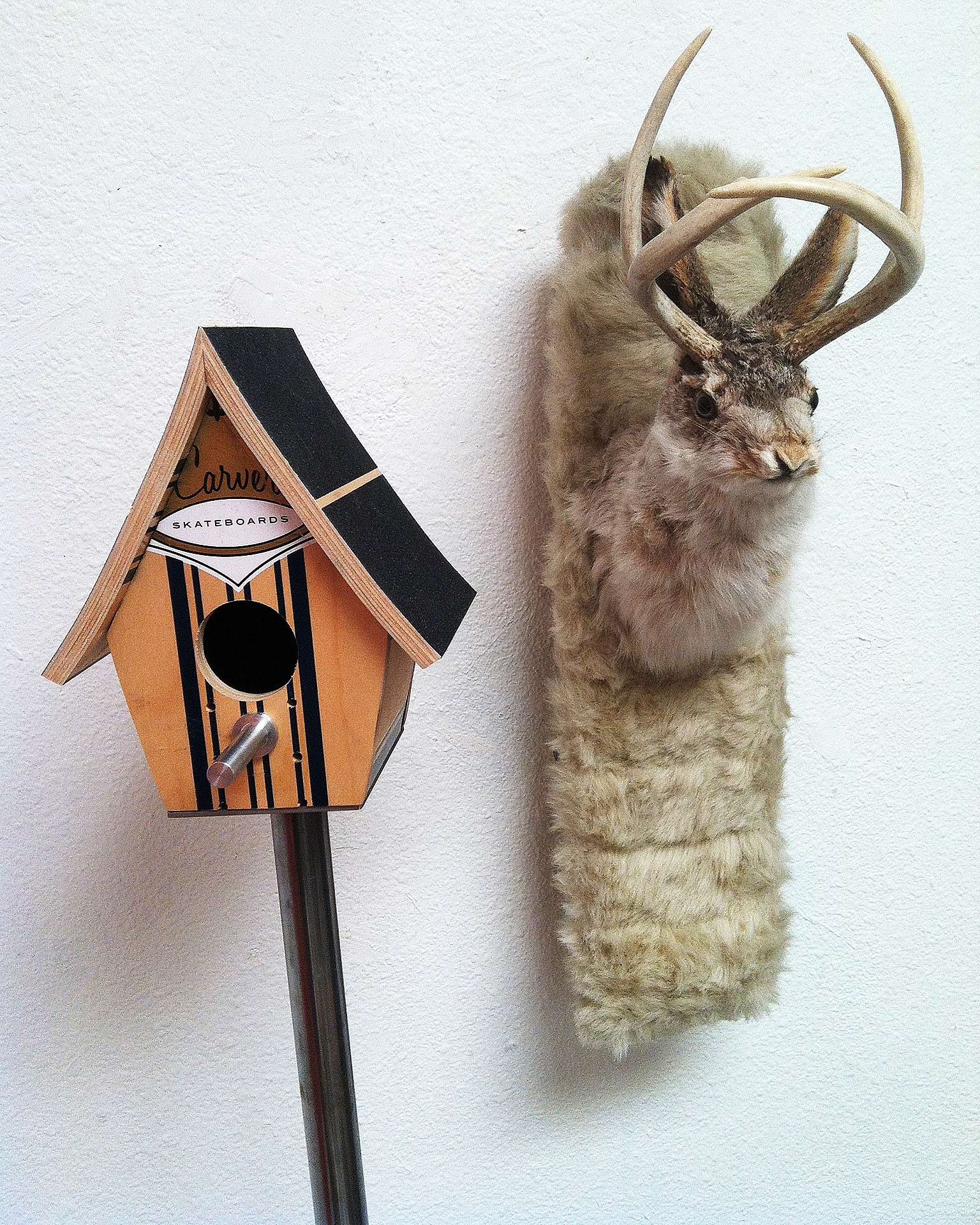Birdhouses and Jackalopes