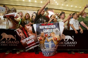 Mayweather and Alvarez fans