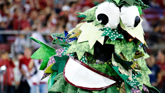 College football roundtable: Best mascots - ESPN Stanford Tree 2013