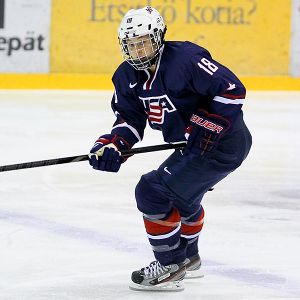 Lyndsey Fry fell hard for hockey after watching The Mighty Ducks, and now she's hoping to become the first person from Arizona to play it in the Olympics.