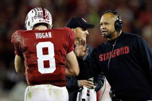 Shaw/Hogan