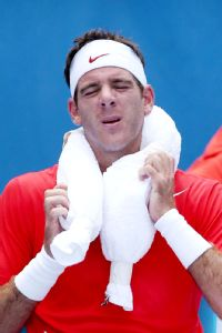 Juan Martin del Potro feels the heat during his first-round win over Rhyne Williams in Melbourne.