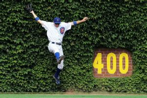 The Wrigley ivy ... so much history, pure perfection.
