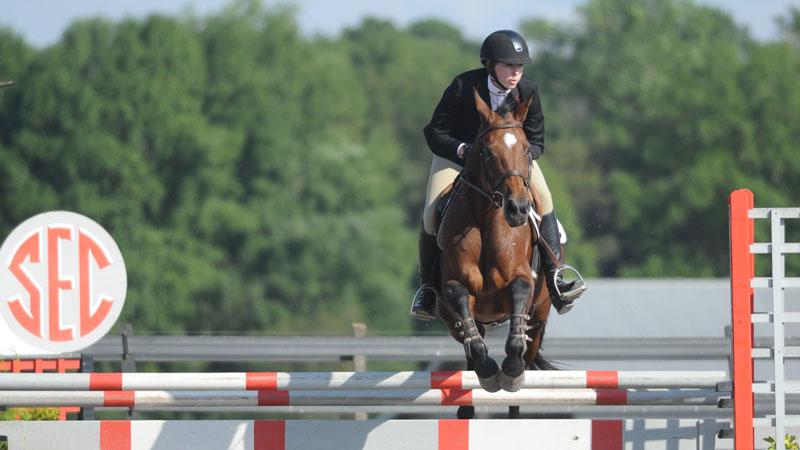 Equestrian 2012 Summer Olympics London Uk Olympics