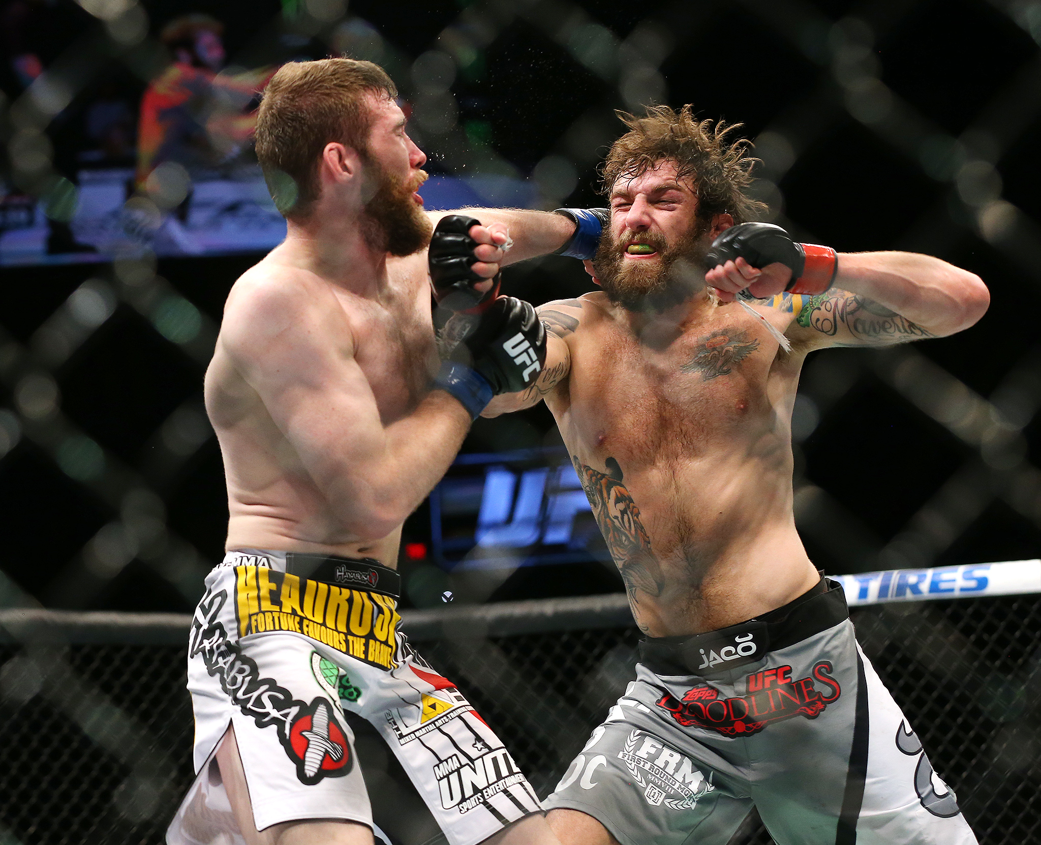 how to get fight of the night in ufc