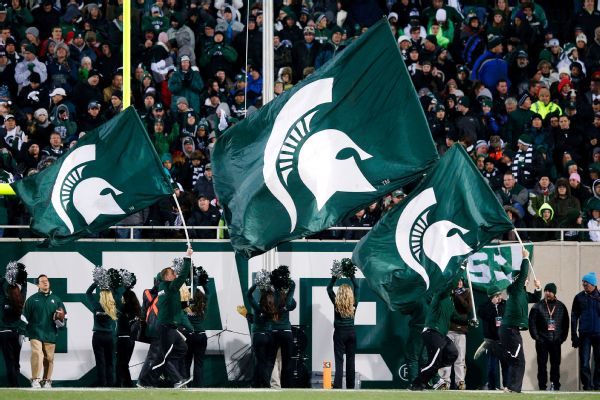 Michigan State Spartans flags