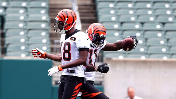 A.J. Green and Brandon LaFell