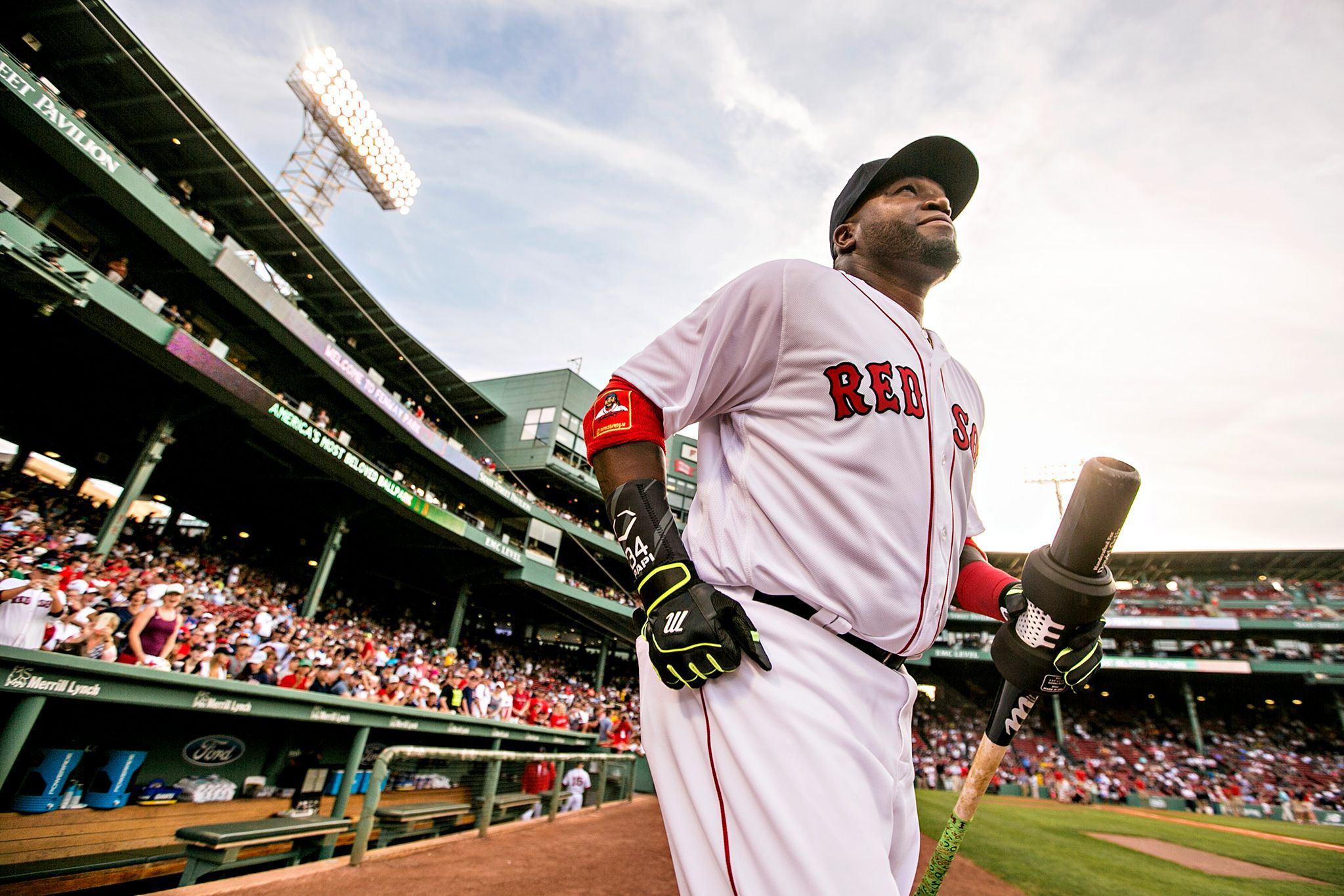 Making Fenway his home