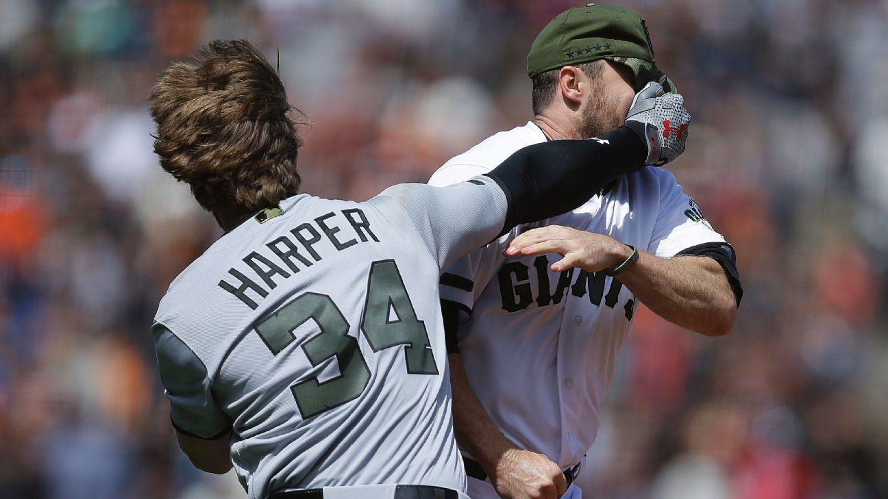 Bryce Harper fight
