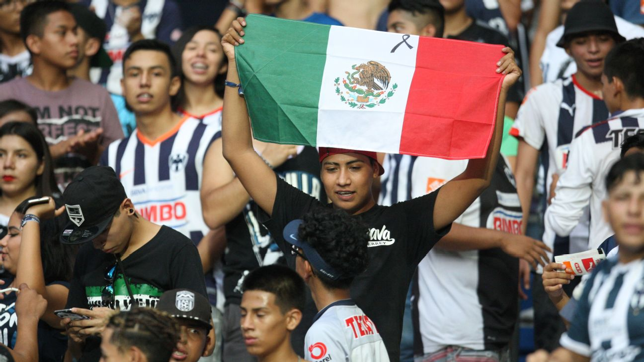 Aficionado con bandera de México