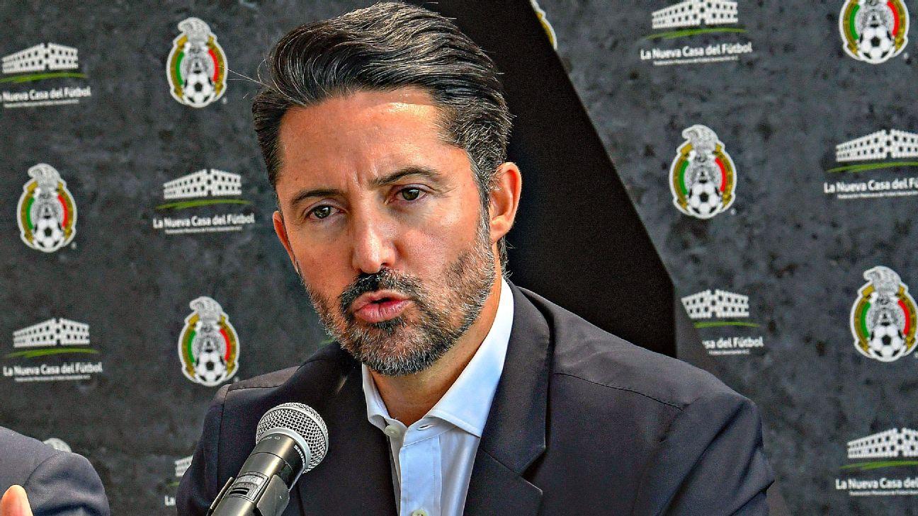 Yon de Luisa, presidente de la FMF.