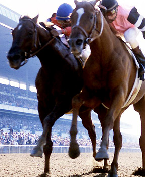 Affirmed beats Alydar to the wire to win the 1978 Belmont Stakes and the Triple Crown.