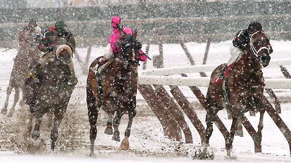 Winter racing on the inner-track at Aqueduct.