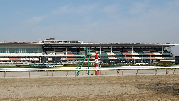 Racing on the inner track at Aqueduct.